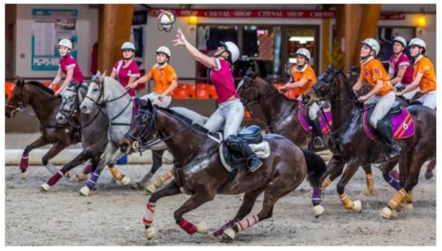 stage équitation bordeaux beautiran horse ball